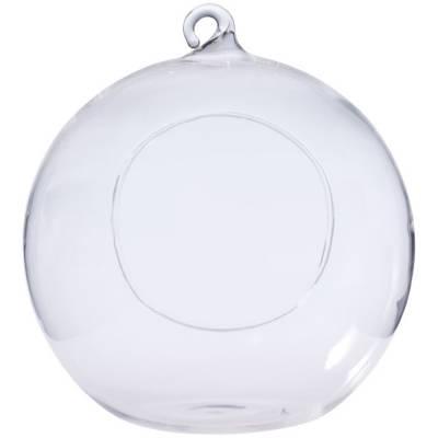 Kugel-Terrarium-transparent