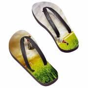 Flip Flops Paradiso